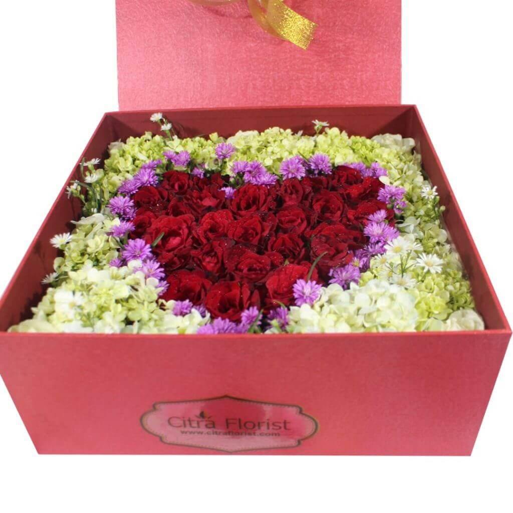 Fresh Flowerbox Roses Love Maroon